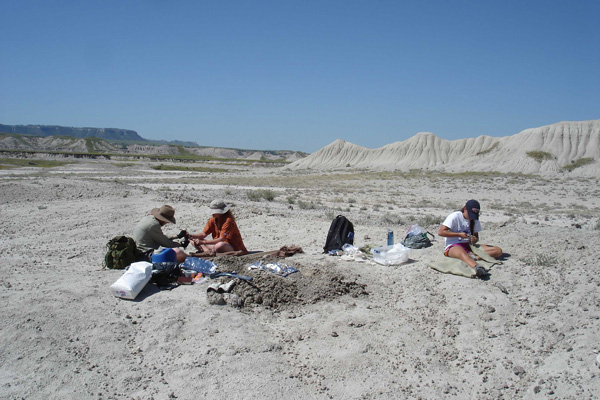 Summer 2015 Paleontological Trip to Badlands