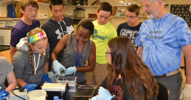 high school students offered hands on summer research projects at  high school students have an exciting opportunity to explore how physics environmental science mathematics and chemistry impact our daily lives and the